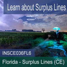 Florida: 6 hr all Licensense CE - Surplus Lines